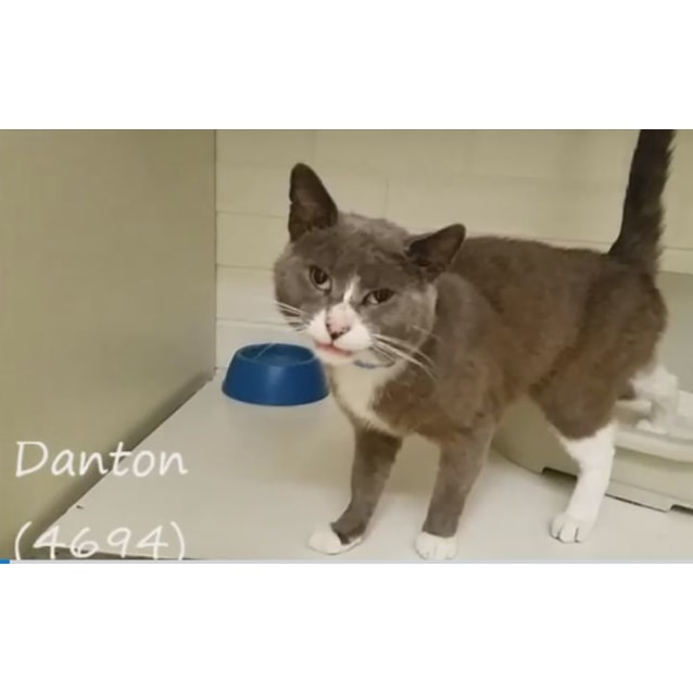 Photo of Danton (4694)