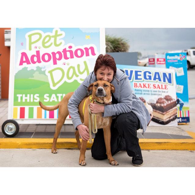 Photo of Cecelia *Adoption Pending*