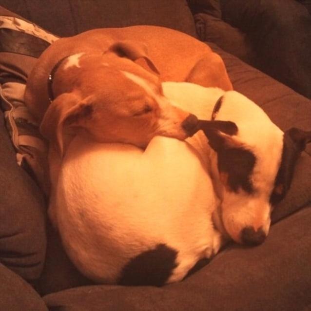 Photo of Max (And Tina)
