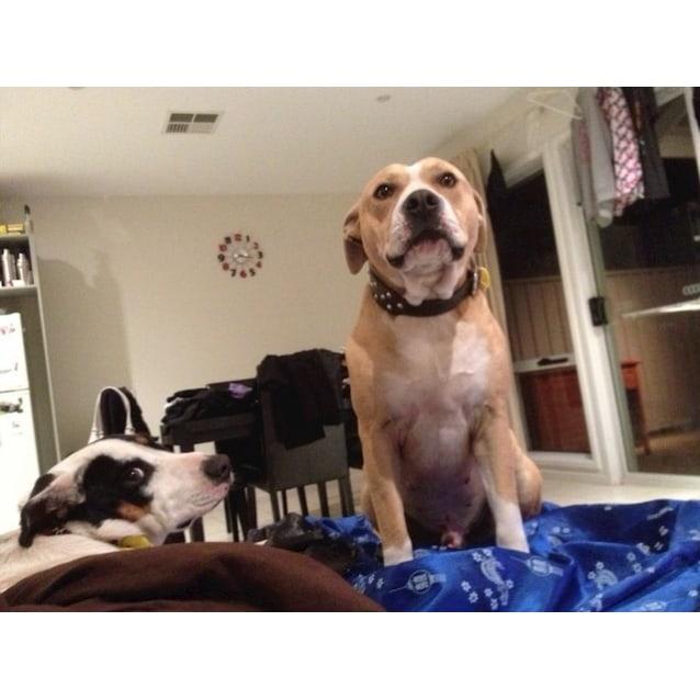 Photo of Tina (& Max)
