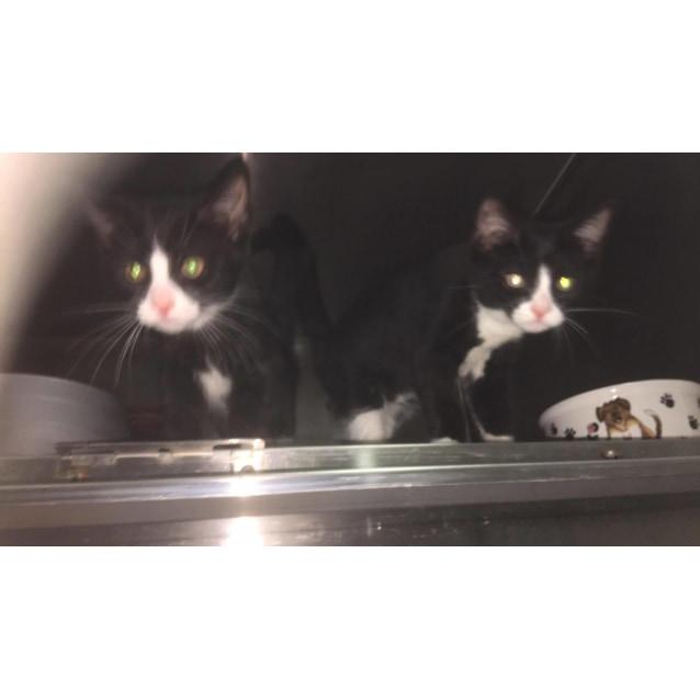 Photo of Ben & Jerry