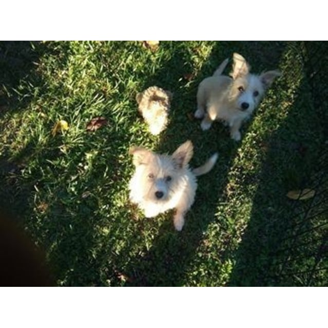 Photo of Mia & Lea