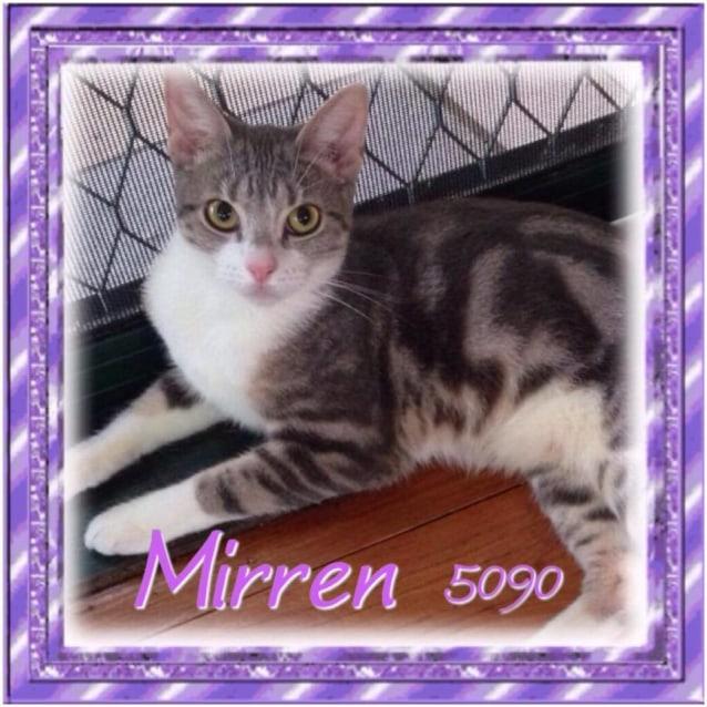 Photo of Mirren (5090)