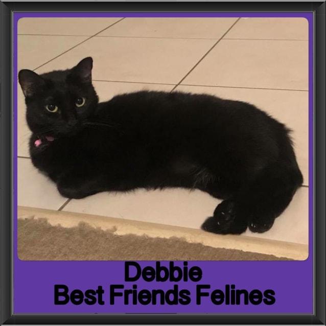 Photo of Debbie