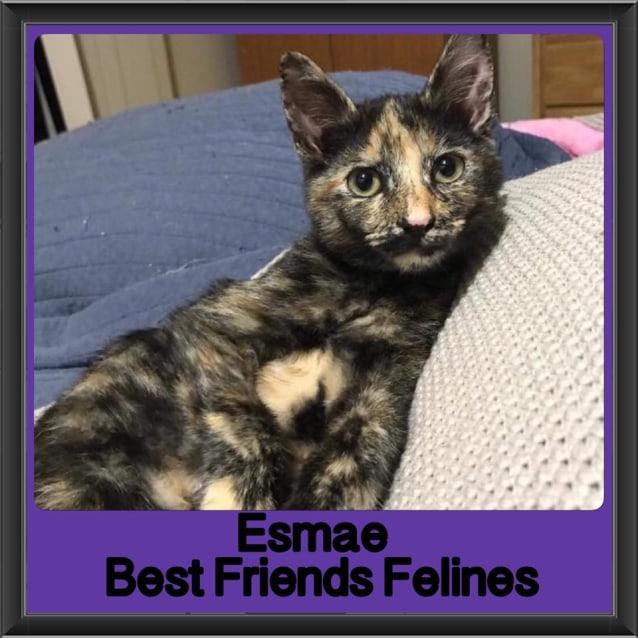 Photo of Esmae