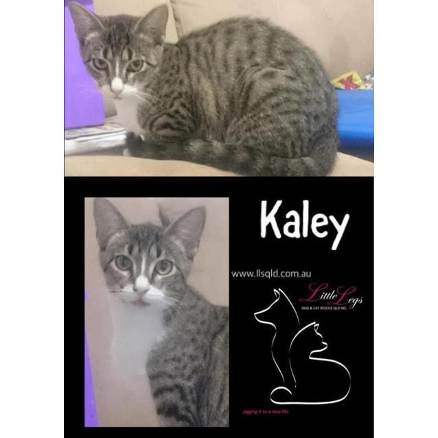 Photo of Kaley