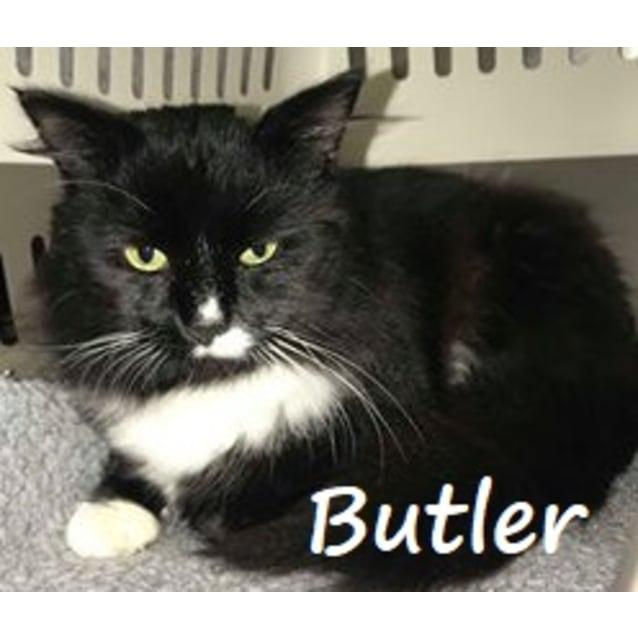 Photo of Butler