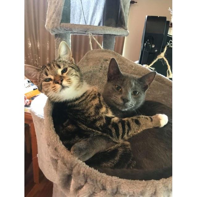 Photo of Maya And Oliver