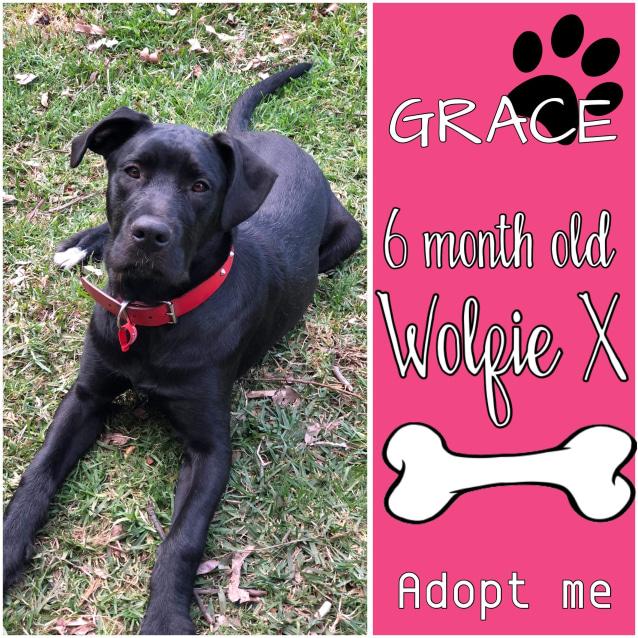 Photo of Grace