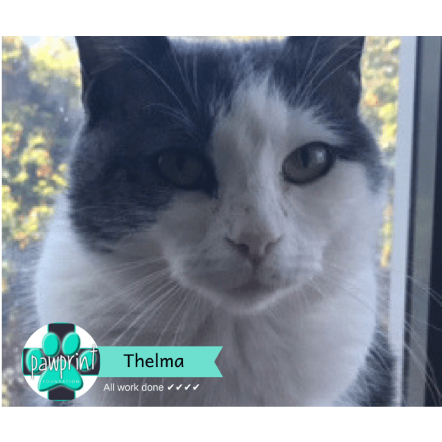 Photo of Thelma