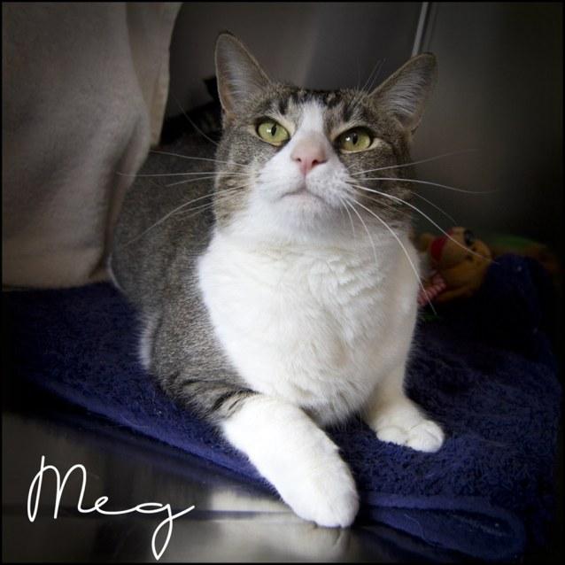 Photo of Meg