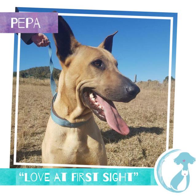 Photo of Pepa