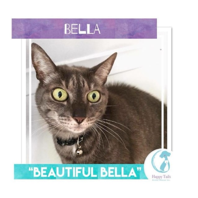 Photo of Bella
