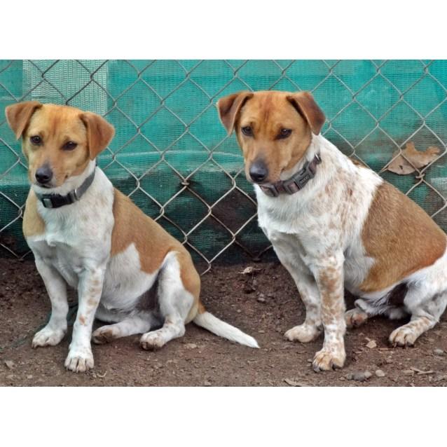 Photo of Skyza And Jax