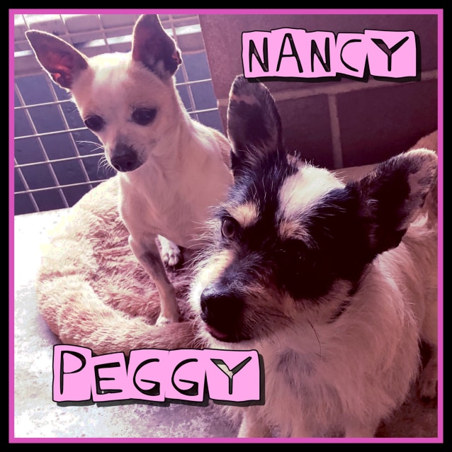 Photo of Nancy & Peggy