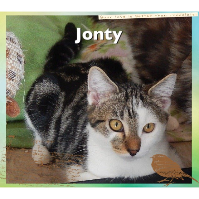 Photo of Jonty