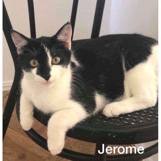 Photo of Jerome