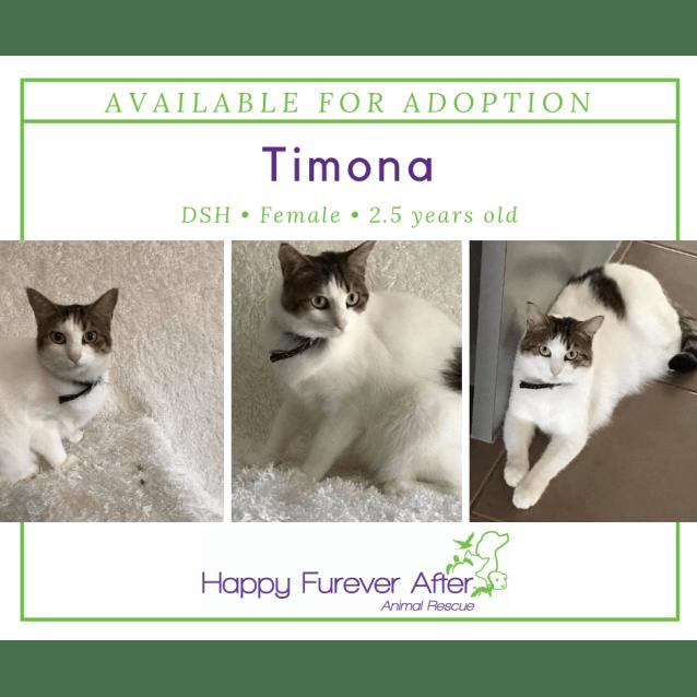 Photo of Timona