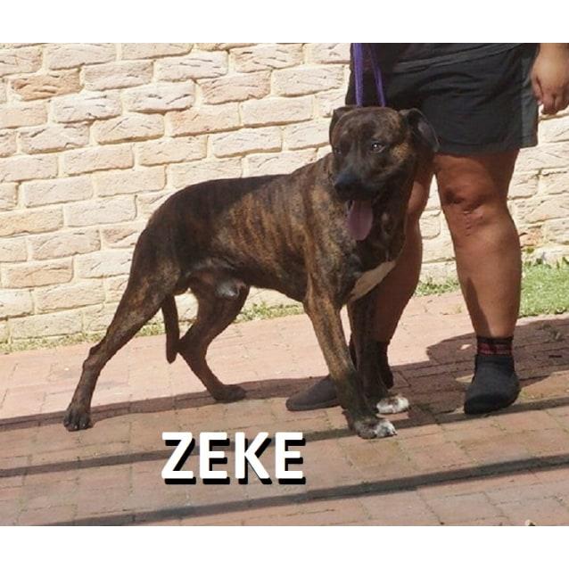 Photo of Zeke