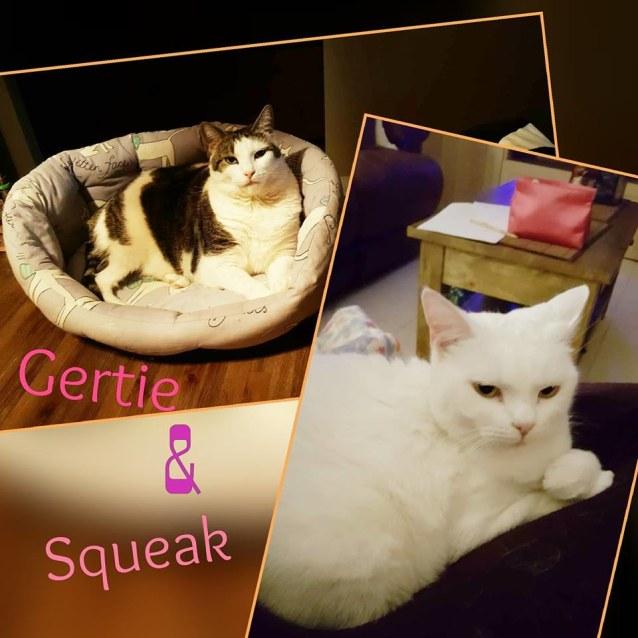 Photo of Gertie & Squeak