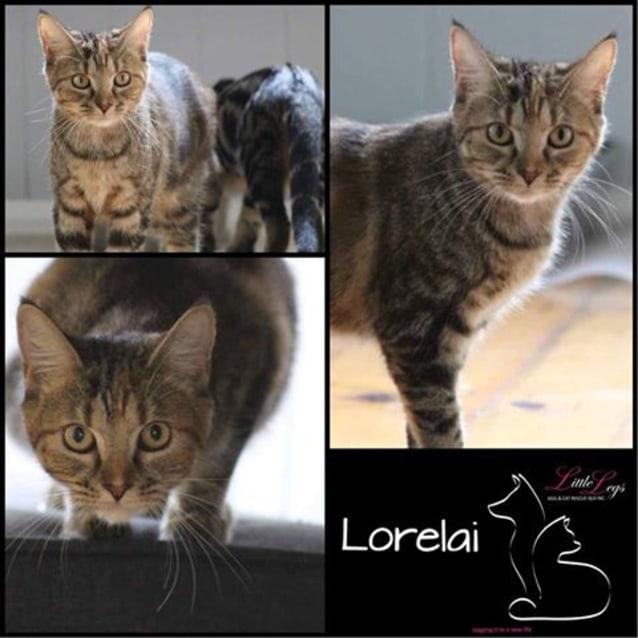 Photo of Lorelai