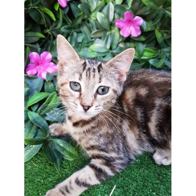 Photo of Amara ❤