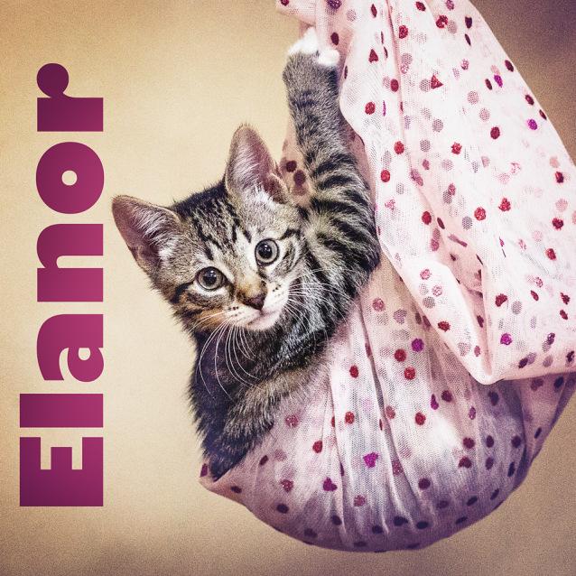 Photo of Elanor