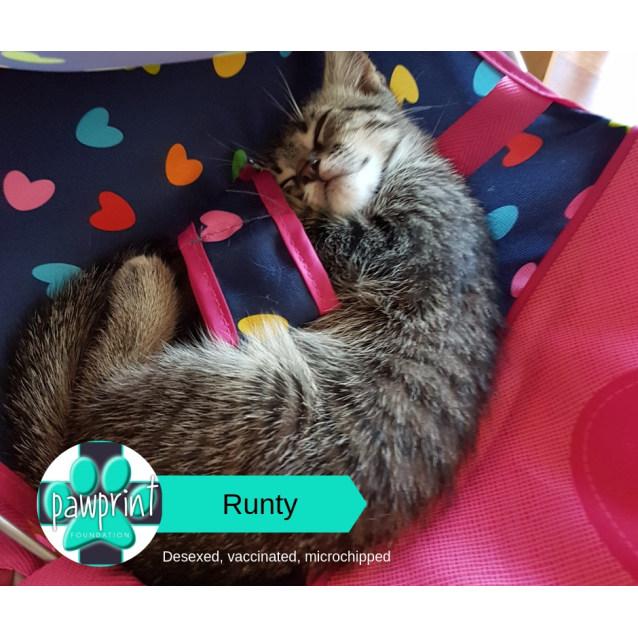 Photo of Runty