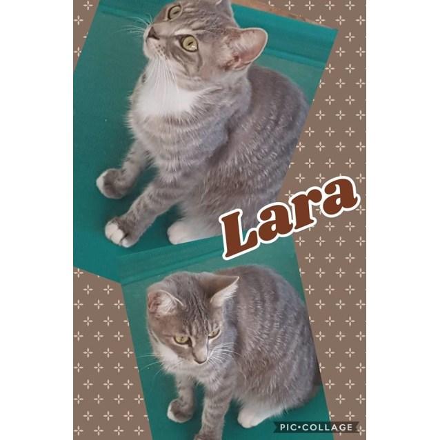 Photo of Lara