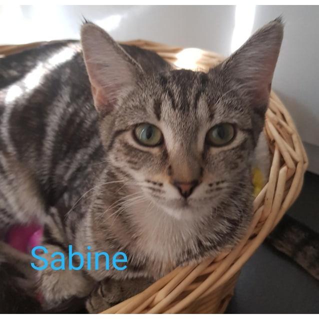 Photo of Sabine