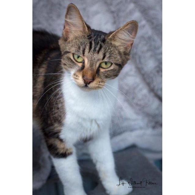 Photo of Zayda