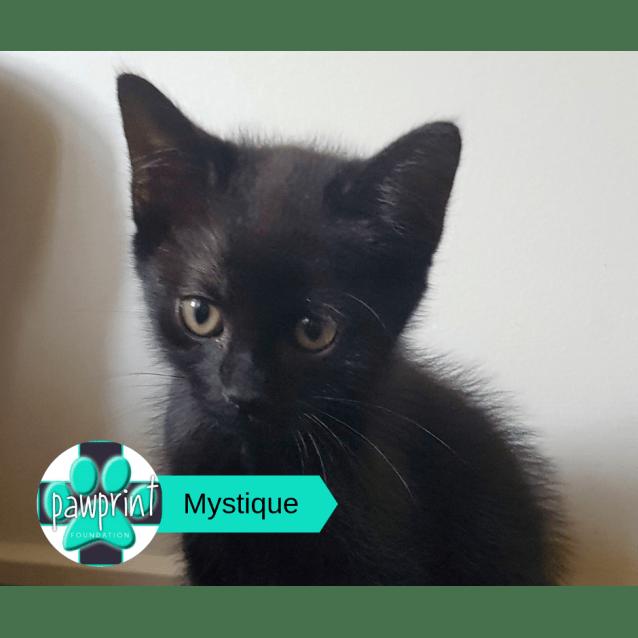 Photo of Mystique