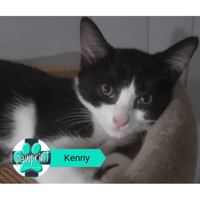Photo of Kenny