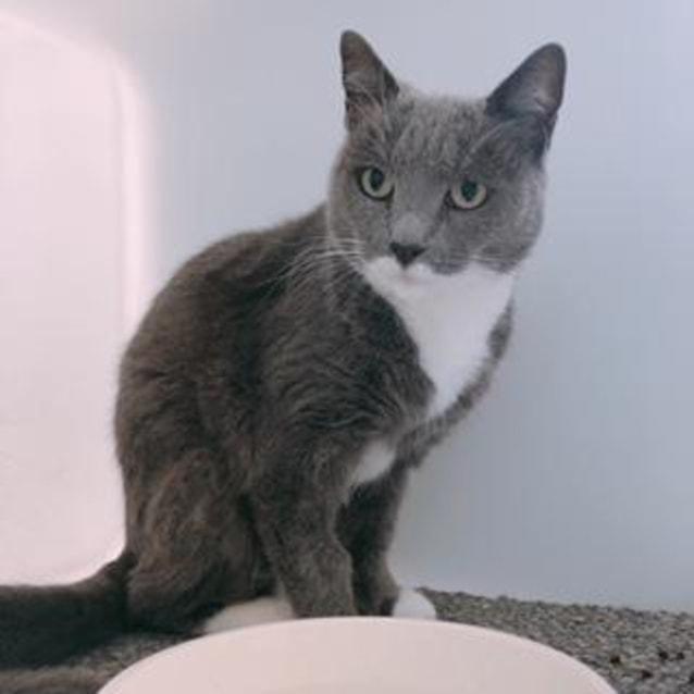 Photo of Edith