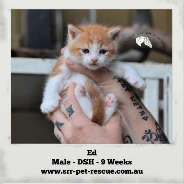 Photo of Ed/Eddie