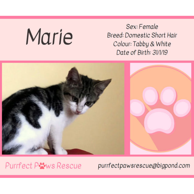 Photo of Marie