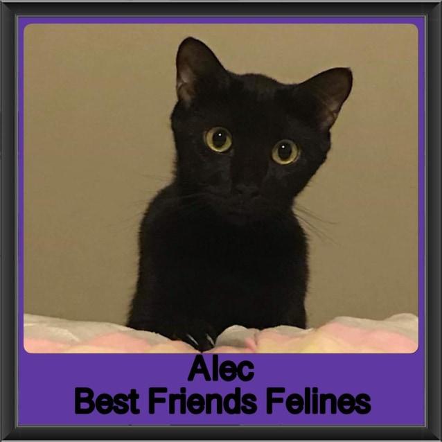 Photo of Alec