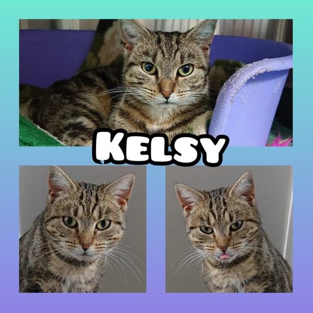 Photo of Kelsy