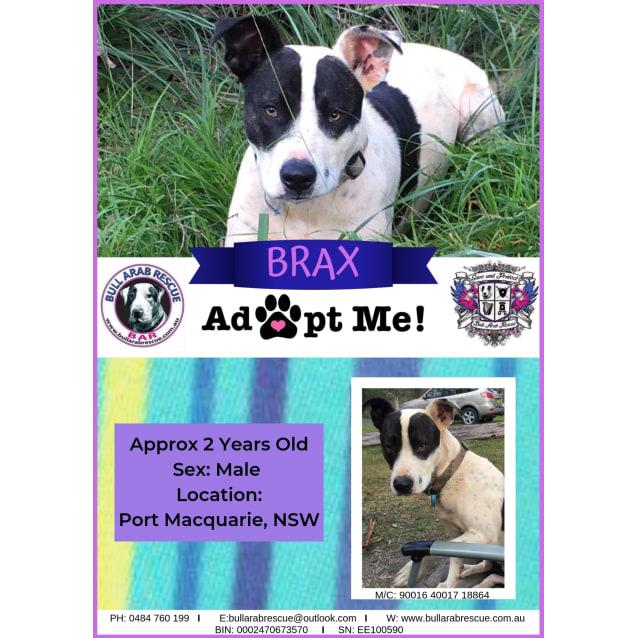 Photo of Brax