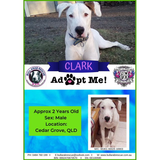 Photo of Clark
