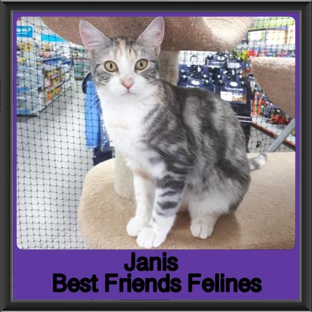 Photo of Janis