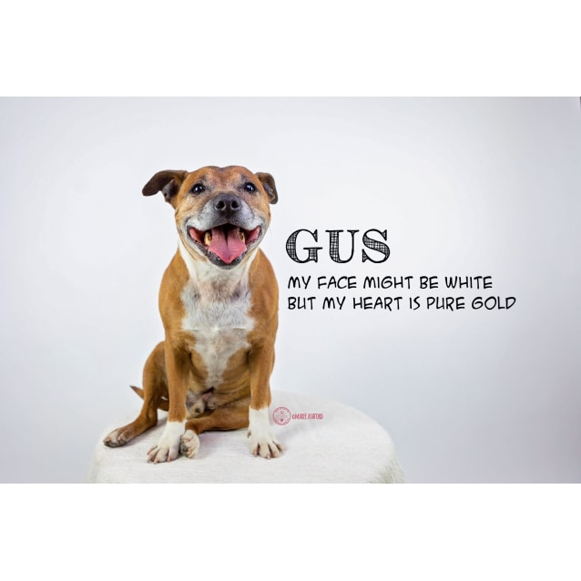 Photo of Gus