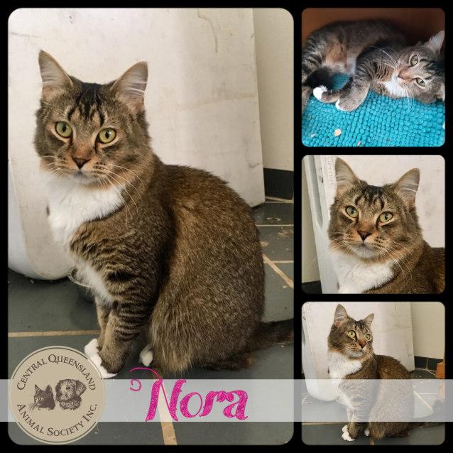 Photo of Nora