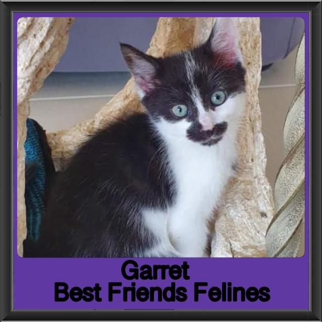 Photo of Garret