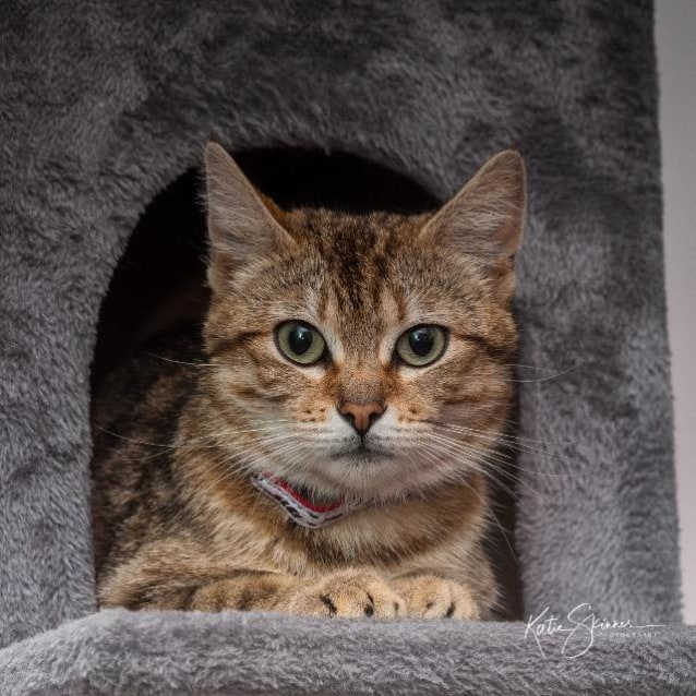 Photo of Mae