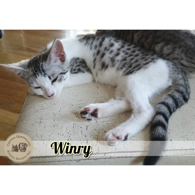 Photo of Winry
