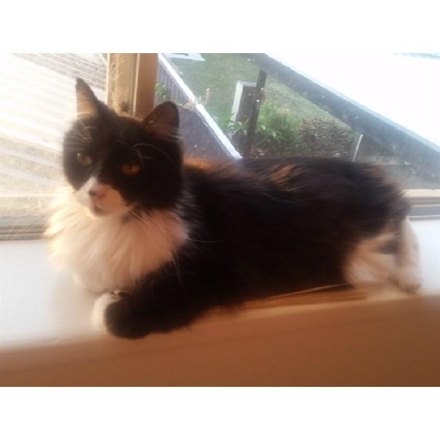 Photo of Olivia
