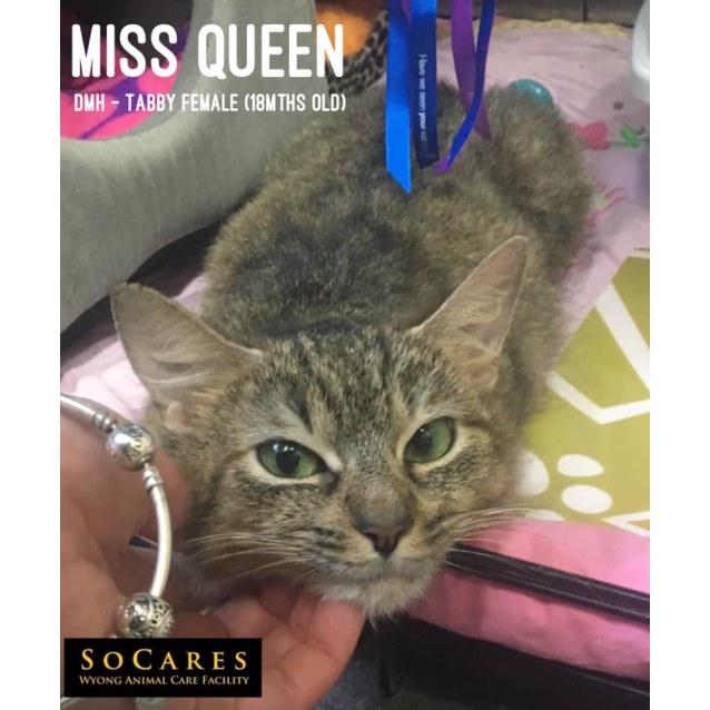 Photo of Miss Queen