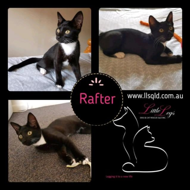 Photo of Rafter