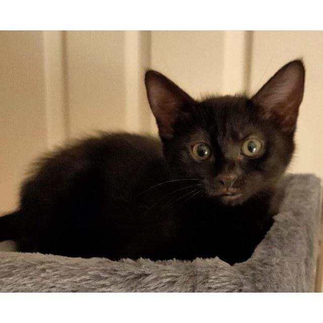Photo of Fran
